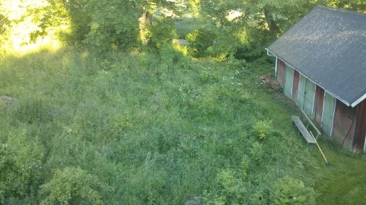 Vy från taket mot baksidan av huset. Nu har vi bland annat trädgårdsland där.